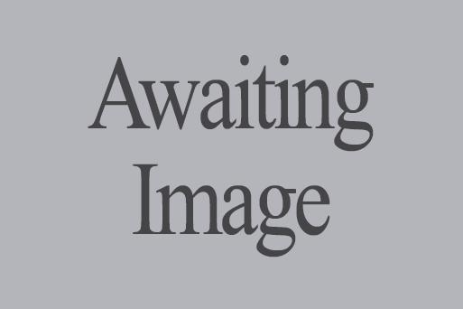 Awaiting_Image